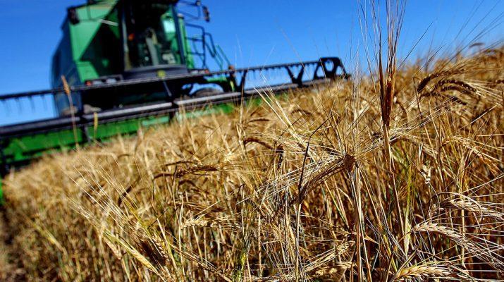 Понесшие потери от паводков на Ставрополье фермеры получат микрозаймы всего под 1%