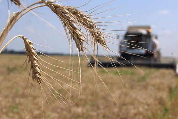 Аграрии из Ставропольского края собрали 5 млн рублей в помощь пострадавшим от паводка