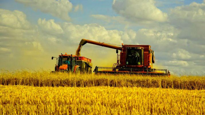 На Ставрополье собрали первый миллион тонн зерна