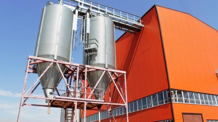 На Ставрополье построят новый завод по выращиванию семян