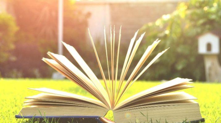 У Нарзанной галереи в Кисловодске открылась «Летняя читальня»