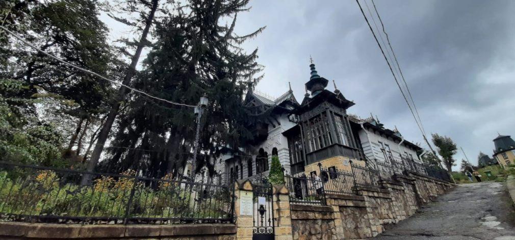 Шаляпинскую ель в Кисловодске наградили за второе место в национальном конкурсе
